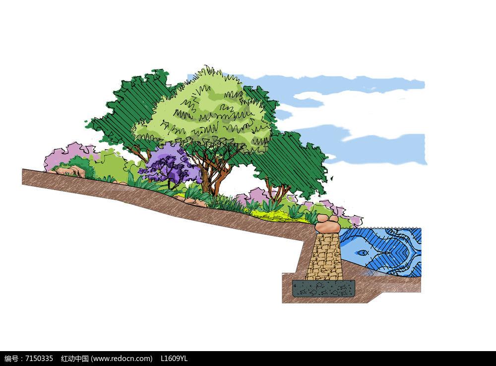 景观盆栽手绘图片