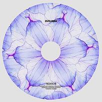 紫色花瓣光盘设计