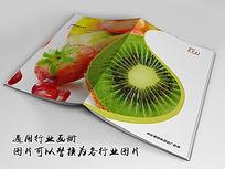 绿色水果画册indd源文件下载