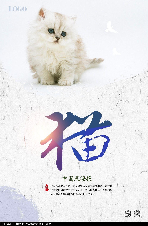 猫海报psd素材下载_海报设计图片
