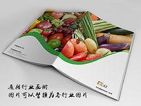 蔬菜画册indd源文件下载