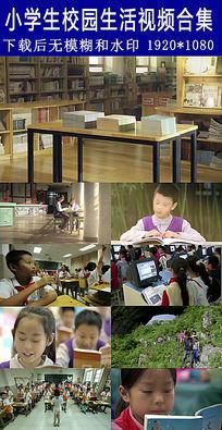 小学生校园生活高清视频合集