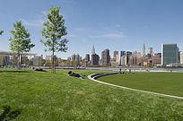 草坪景观公园意向图