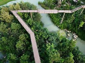 木质高架栈桥