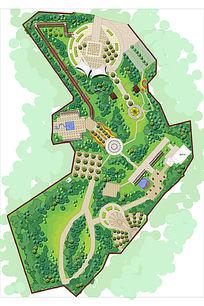 公园广场景观设计彩平图 PSD