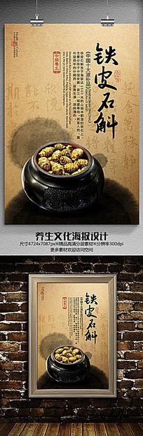 铁皮石斛养生文化海报设计