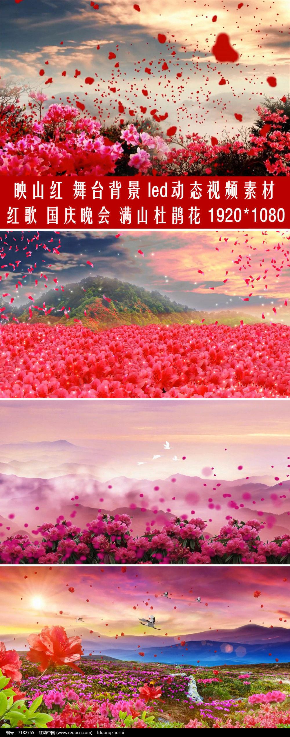 映山红配乐成品花瓣飞舞舞台背景led视频图片
