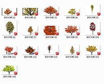 3D彩叶大树模型