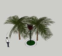 热带棕榈SU植物