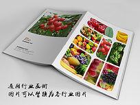 香甜水果画册封面indd源文件下载