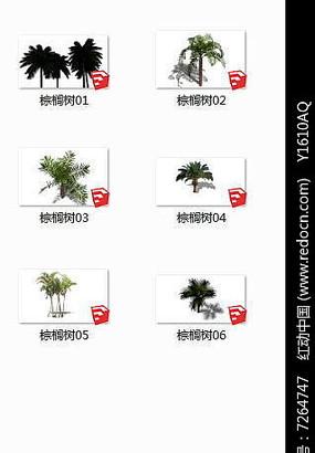 棕榈树SU模型