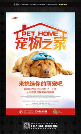 原创设计稿海报设计/宣传单/广告牌海报设计宠物之家宠物宣传海报手绘海报设计外框图片