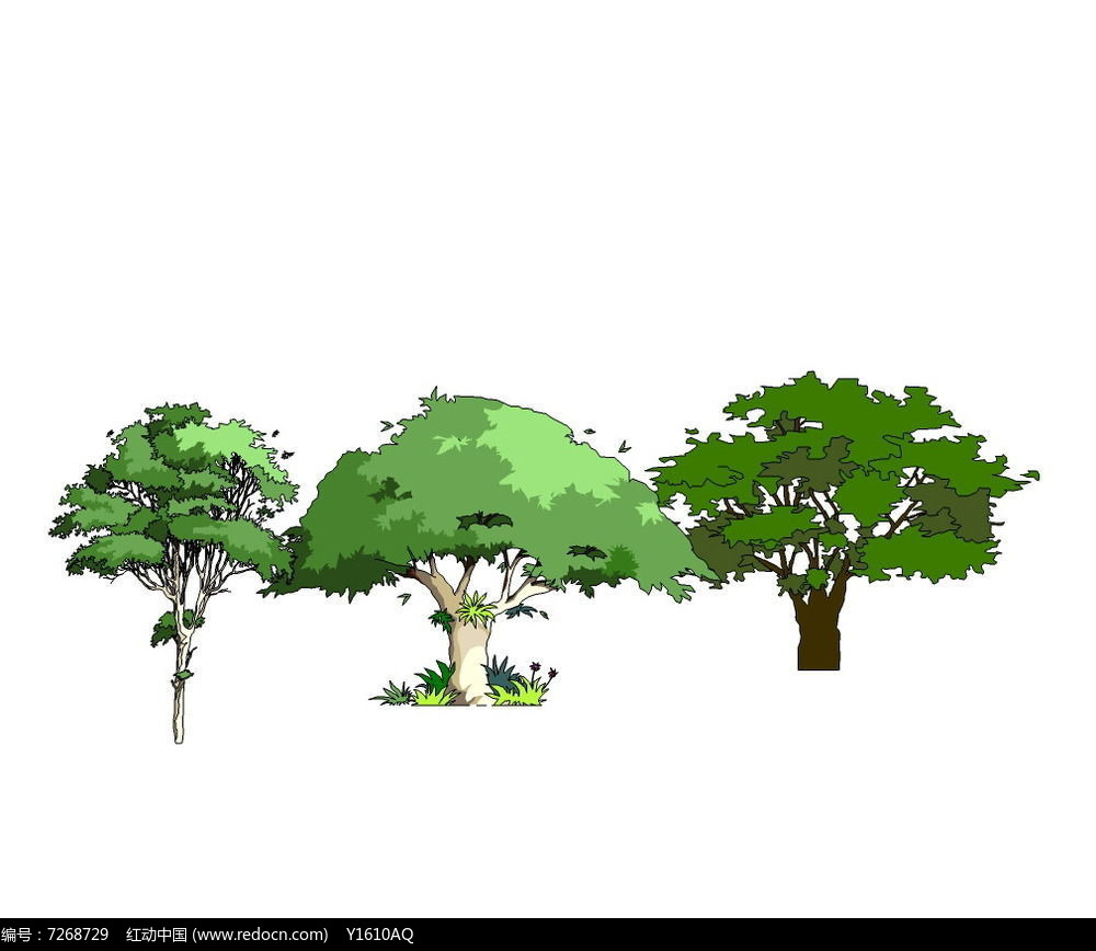 漂亮手绘树图片