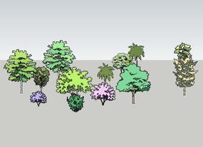 手绘植物模型