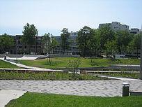 公园绿化景观意向图