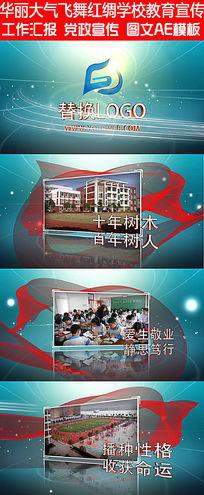 华丽大气飞舞红绸巾光效渲染学校教育宣传会议模板