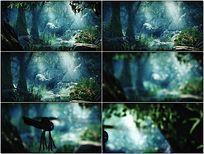 唯美生态环境舞台动态背景视频