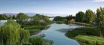 自然滨水湿地效果图