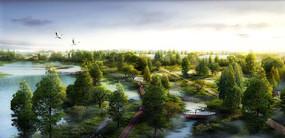 自然湿地公园鸟瞰图