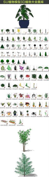 SU植物模型3d图库大全