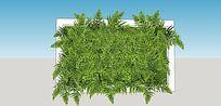 蕨类植物装饰板墙面