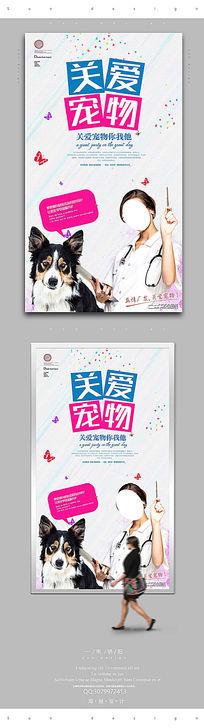 简约宠物宣传海报设计PSD