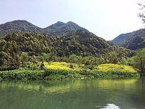 水边油菜花田景观意向