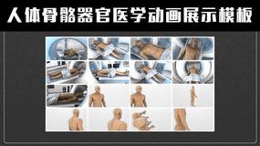 三维 人体骨骼器官医学动画展示ae模板
