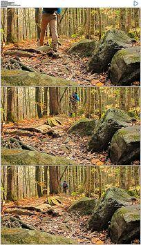 在森林中徒步旅行实拍视频素材
