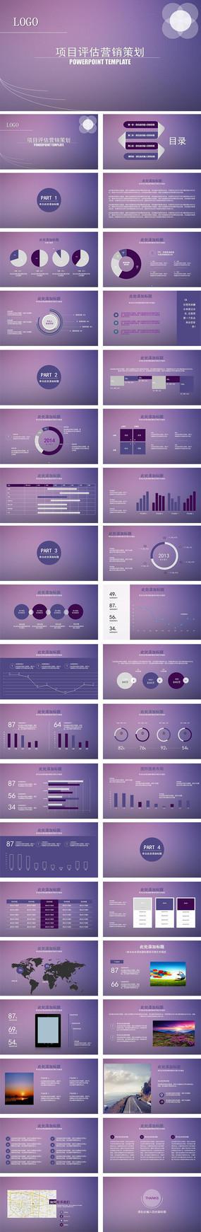项目评估销售策划ppt模板