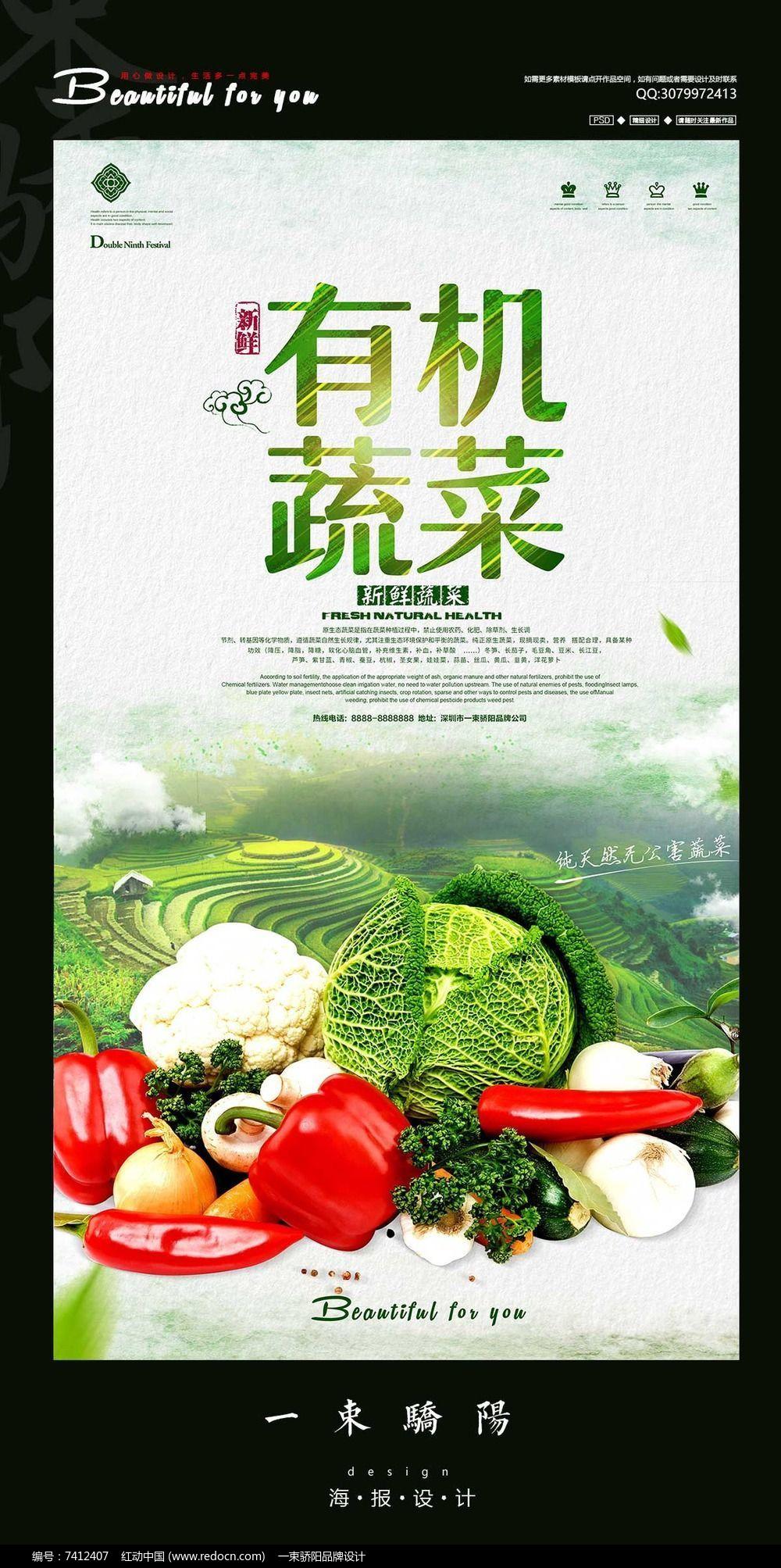 简约有机蔬菜宣传海报设计PSD图片