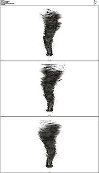 水墨龙卷风动态视频素材