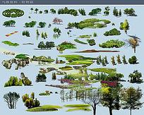 常用树 立面树素材PS