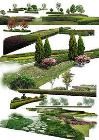 公园灌木丛素材