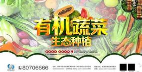 有机蔬菜健康美味蔬果促销海报