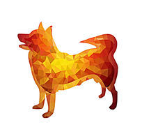 十二生肖狗造型插画