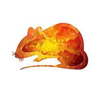 十二生肖鼠造型插画 PSD