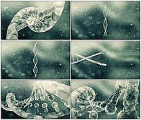 DNA医学演示动画视频