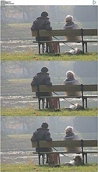 老年人夫妇和一只小狗在公园长椅上静坐实拍视频素材