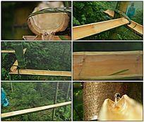 竹林竹筒引水视频