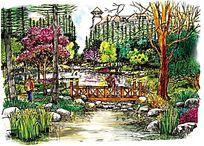 风景区小桥手绘