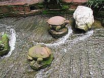 乌龟水景小品