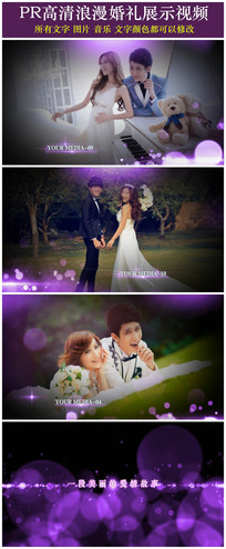 PR大气婚庆婚礼电子相册视频