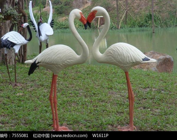 壁纸 动物 鸟 摄影 桌面 600_475