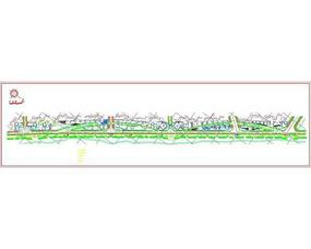 某市滨江大道规划设计图
