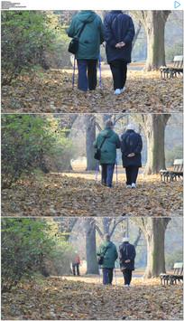 老人公园散步白头偕老实拍视频素材