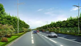 城市道路绿化PSD效果图 PSD
