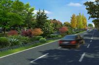 道路中央带绿化 PSD