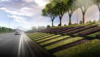 城市公路旁绿化效果图 PSD