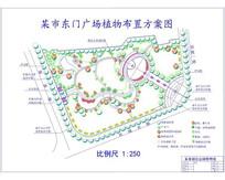 某市东门广场植物布置方案图